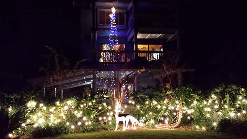 Marion's Christmas Lights - pic taken by Robbie during Christmas visit in 2014